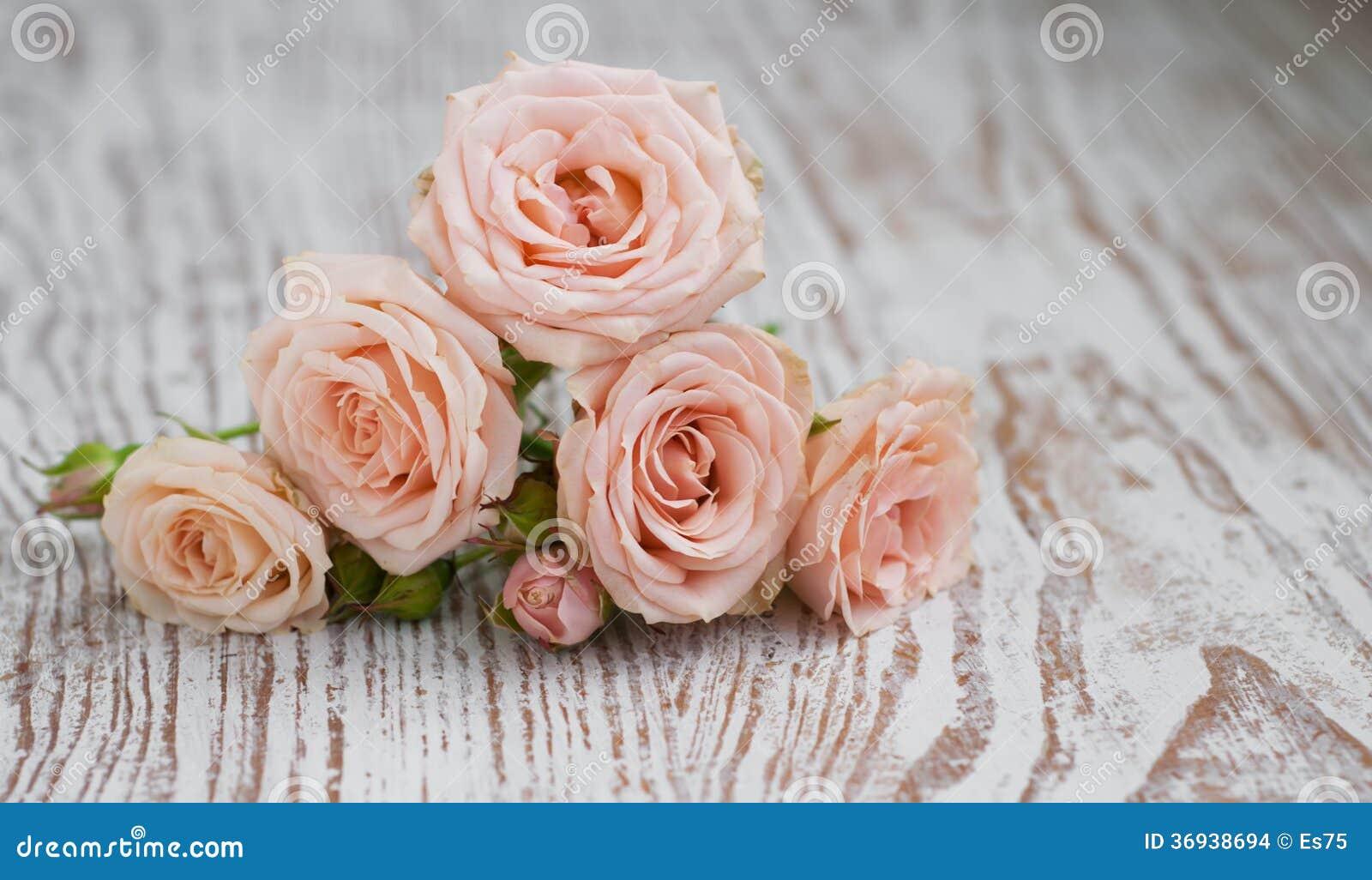 Roses rose-clair