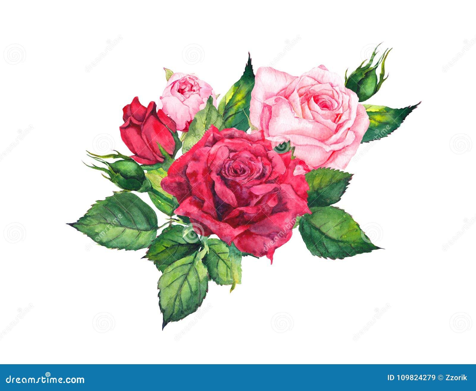 roses rouges - composition florale aquarelle pour la carte de