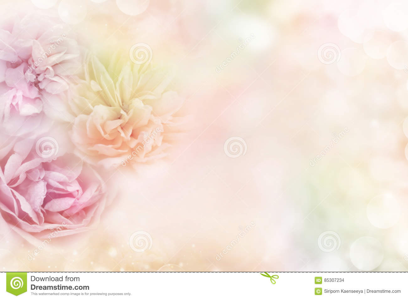 Soft Pastel Background With Roses Vector Illustration