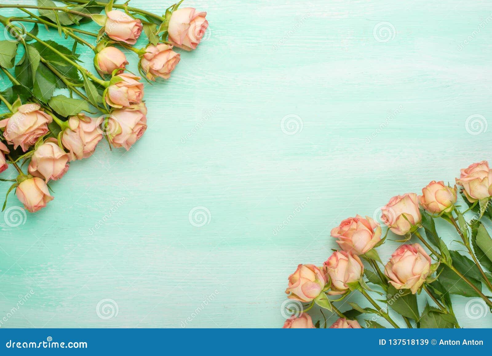 Roses roses sur le fond en bois en bon état, fond de fête, anniversaire, mariage, Saint-Valentin Configuration plate Vue supérieu