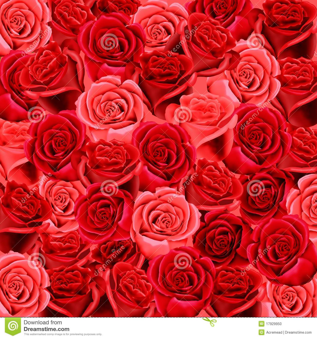 Wallpaper Pattern Red Rose
