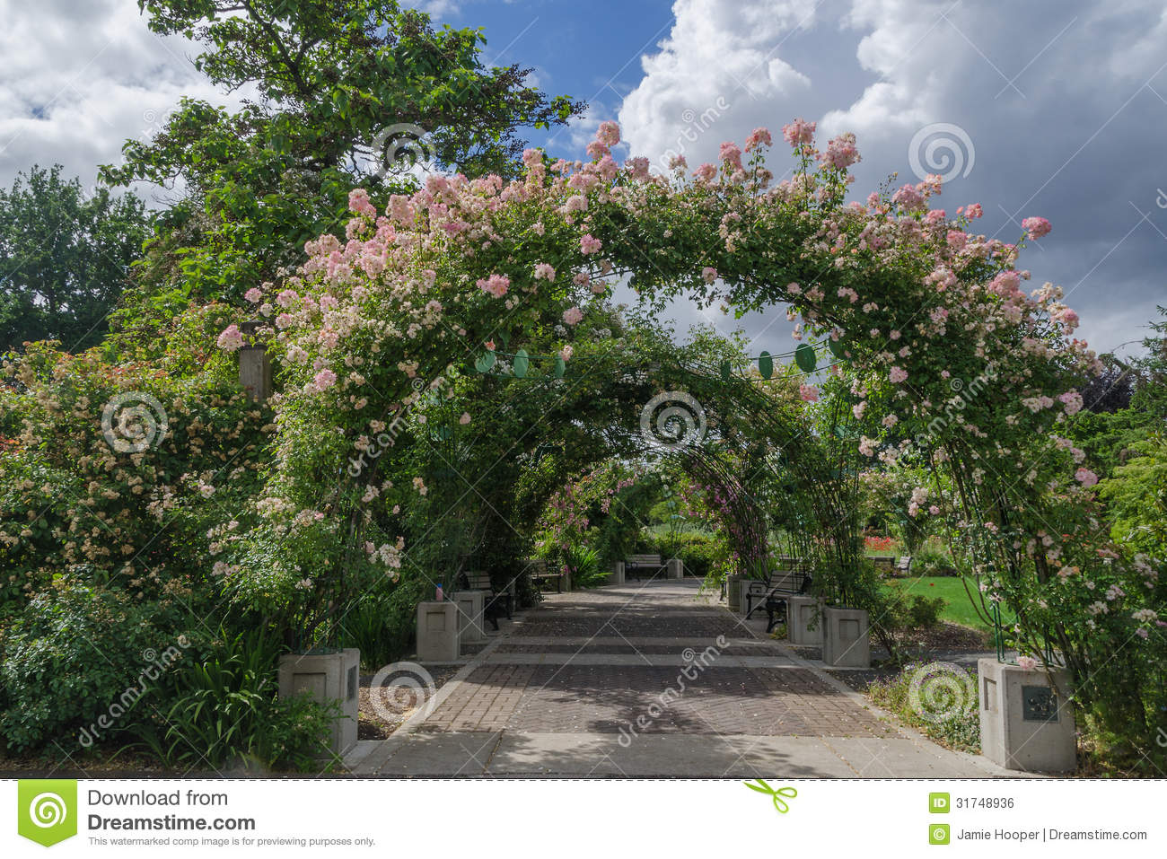 Owens Rose Garden Eugene Oregon Roseway Arch Stock Photo
