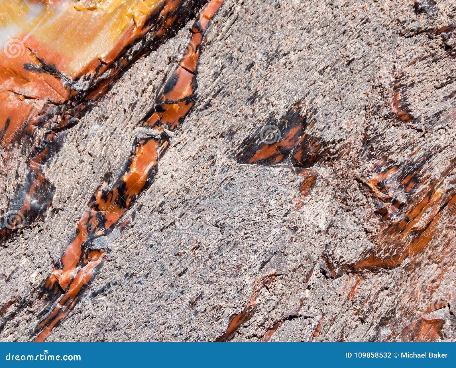 Rosso e struttura di legno petrificata giallo