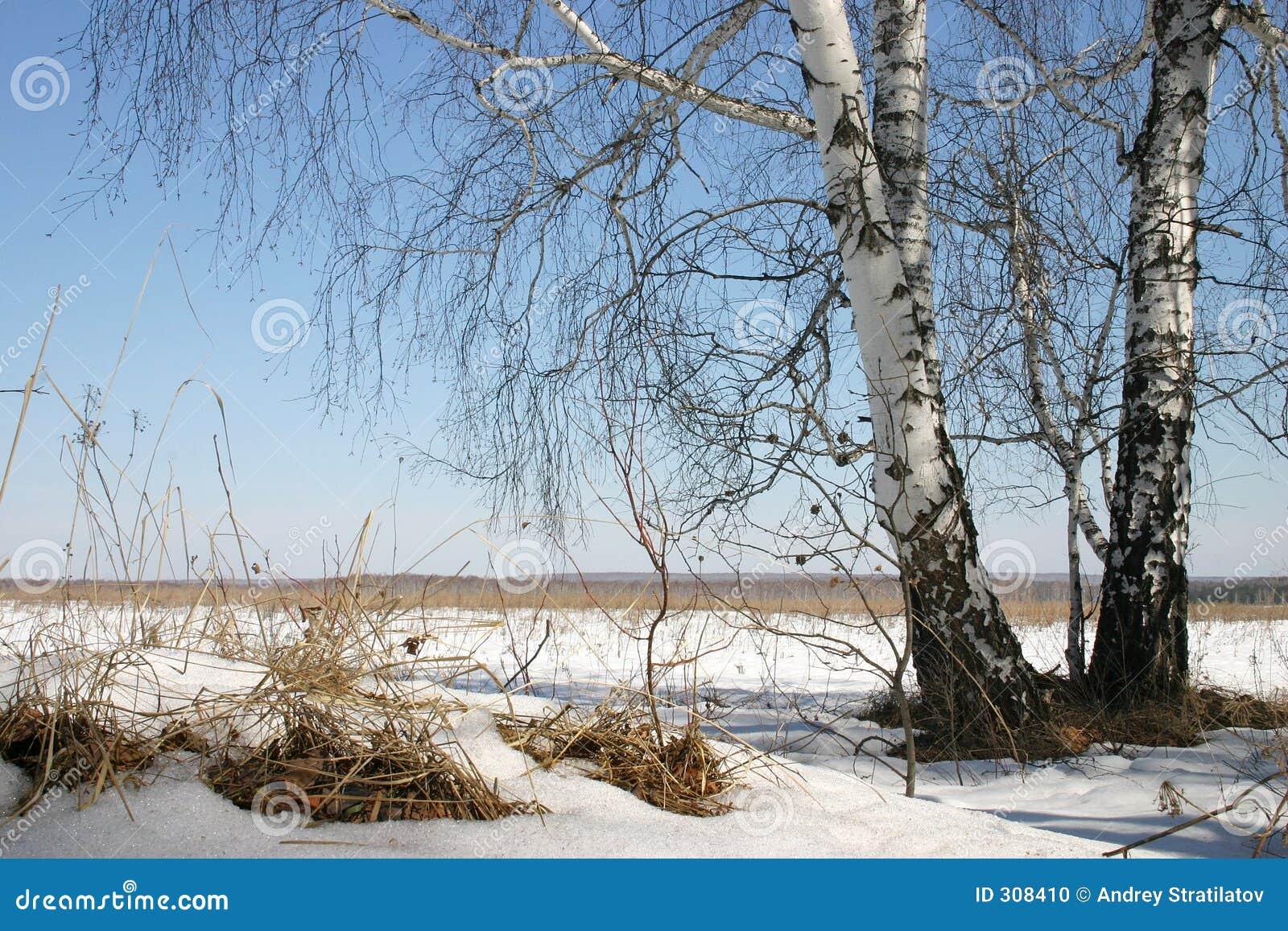 Rosyjskiej natury