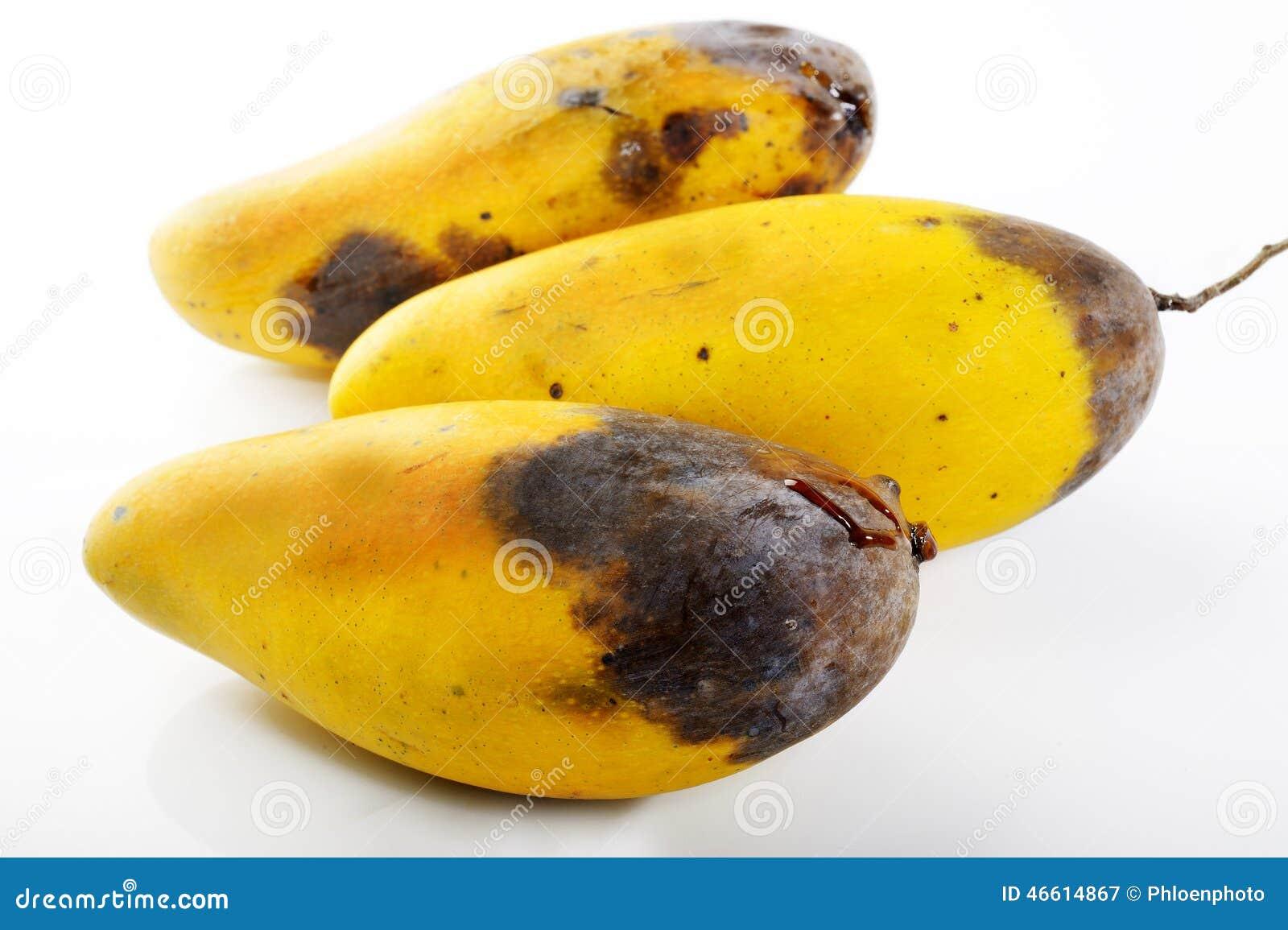 Natural Yellow Skin