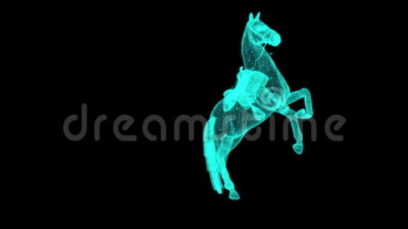 Rotation Of Wire Frame Isolated Horse On Black Screen Stock Video ...