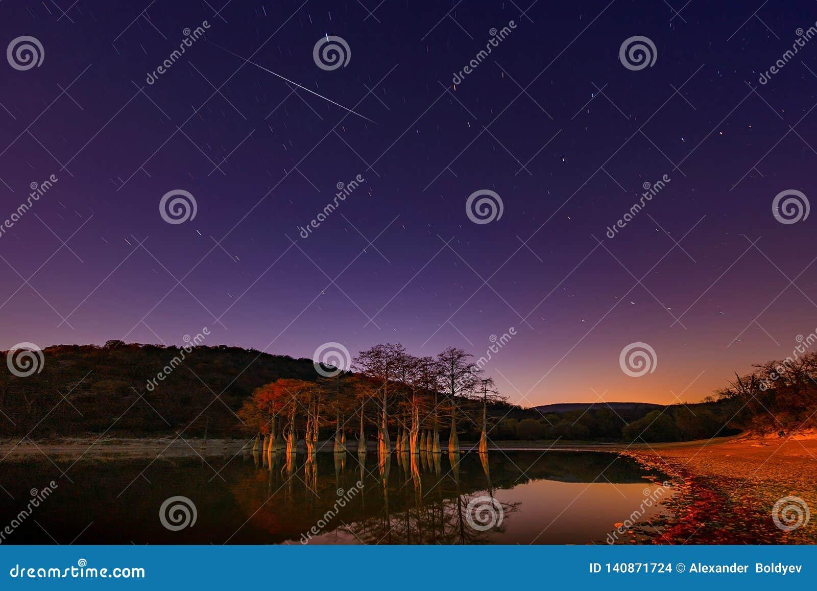 Rote Blätter im Herbst auf den Niederlassungen der Sumpfzypressenbäume im Wasser von einem Gebirgssee das Tal von Sukko