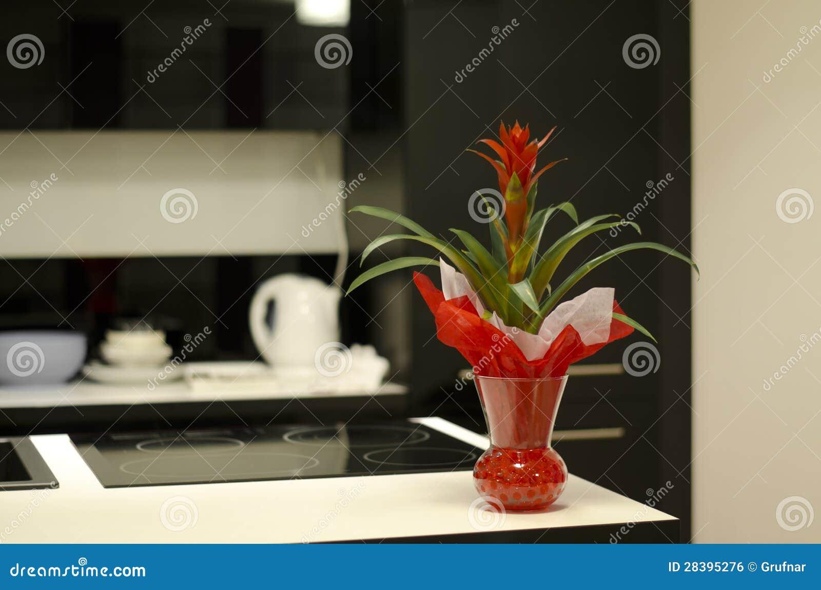 Rote Blume Auf Kuchenarbeitsplatte Stockfoto Bild Von Mobel Gerat