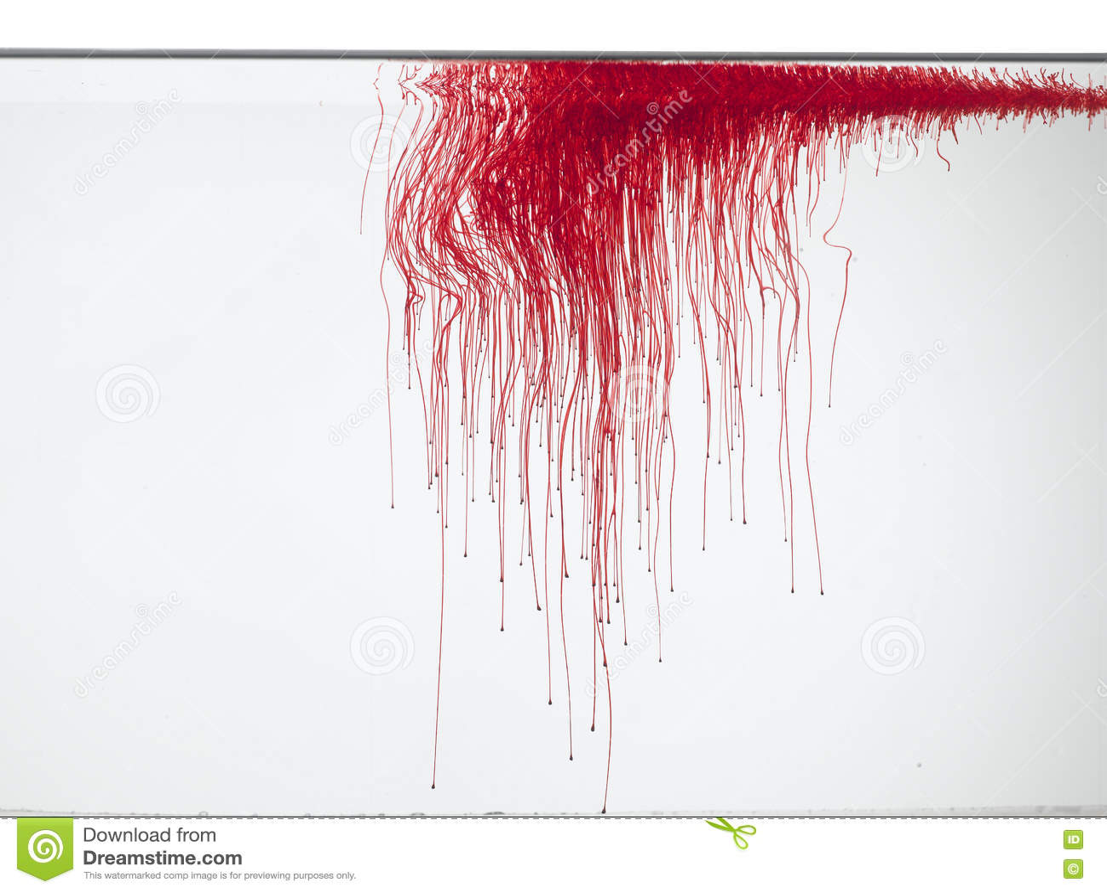 Rote Farbe Im Wasser Stockbild Bild Von Lack Pour Mord 71950097