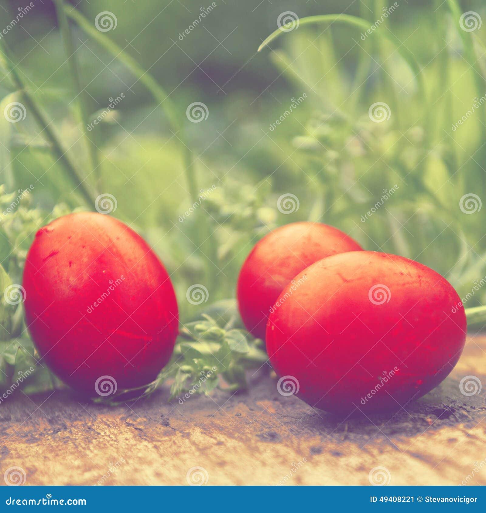 Download Rote Ostereier Im Grünen Gras Stockbild - Bild von ostern, grün: 49408221