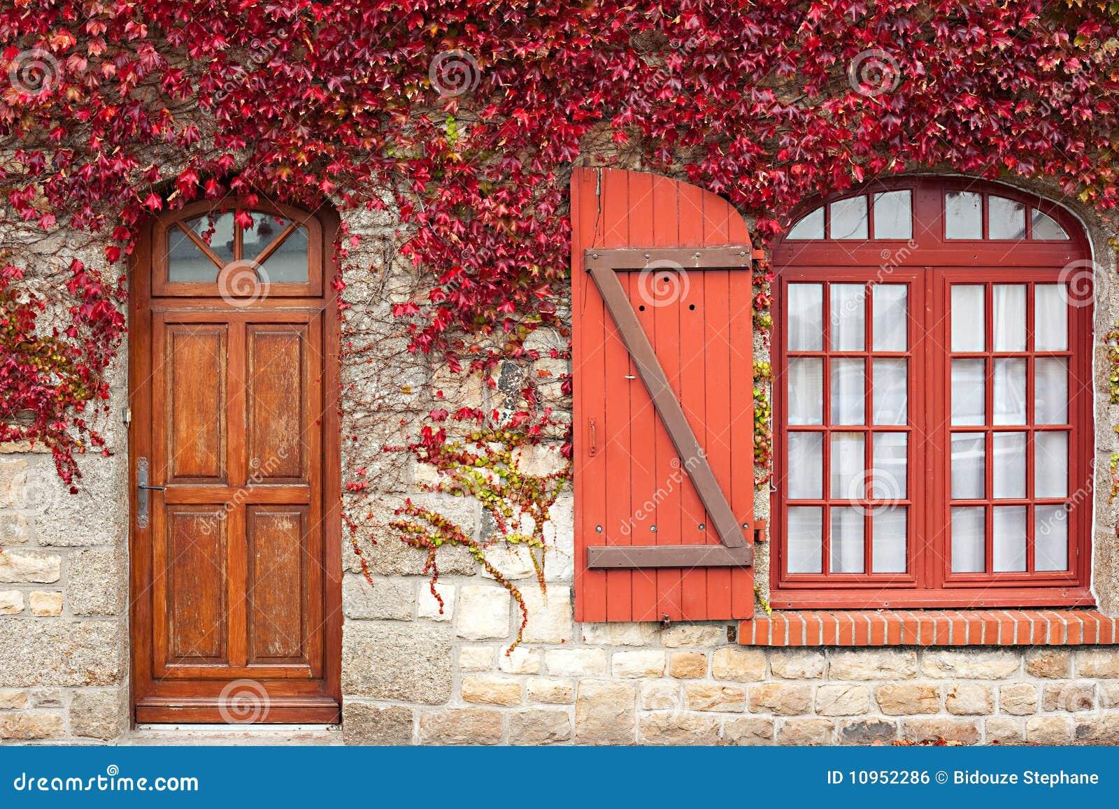 Rote Rebe des Herbstes auf Haus