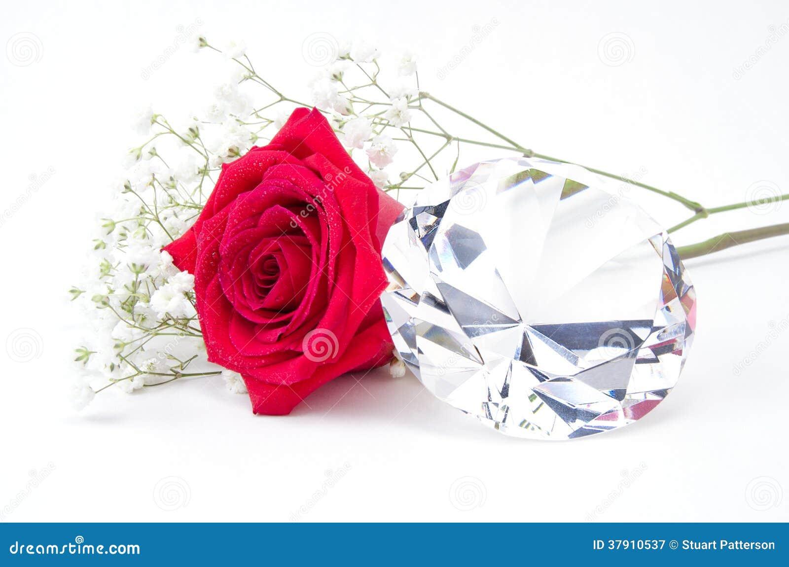 rote rose und diamant stockbild bild von wunsch floral 37910537. Black Bedroom Furniture Sets. Home Design Ideas