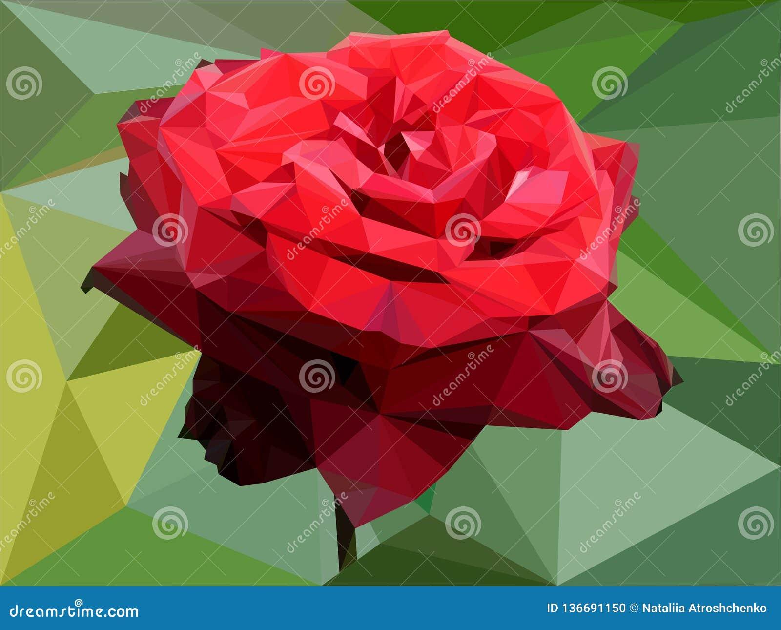 Rote Rose von den Dreiecken
