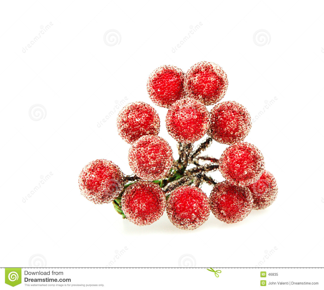 Rote Stechpalme-Beeren