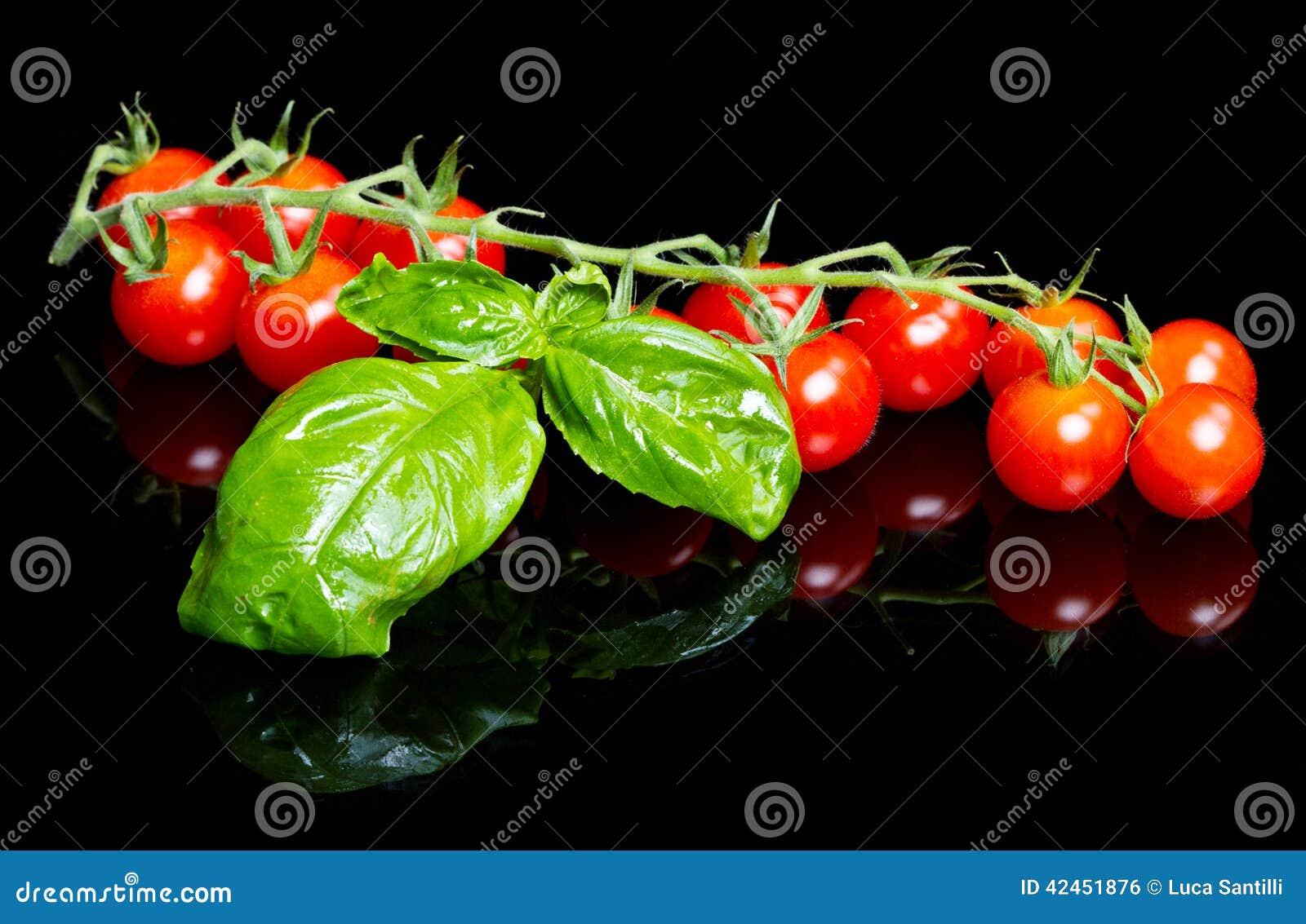 Rote Tomaten mit Basilikumblatt auf Schwarzem