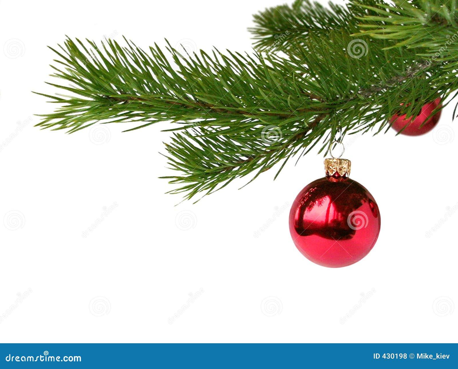 Rote weihnachtskugeln stockfoto bild von feiertag kiefer 430198 - Bilder weihnachtskugeln ...