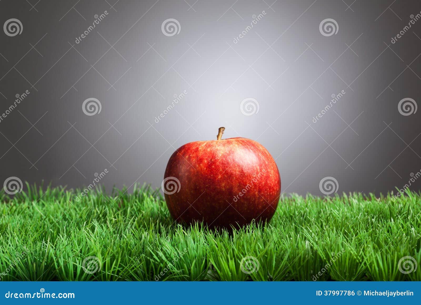 Roter apfel im gras grauer hintergrund stockfoto bild for Apfel dekoration