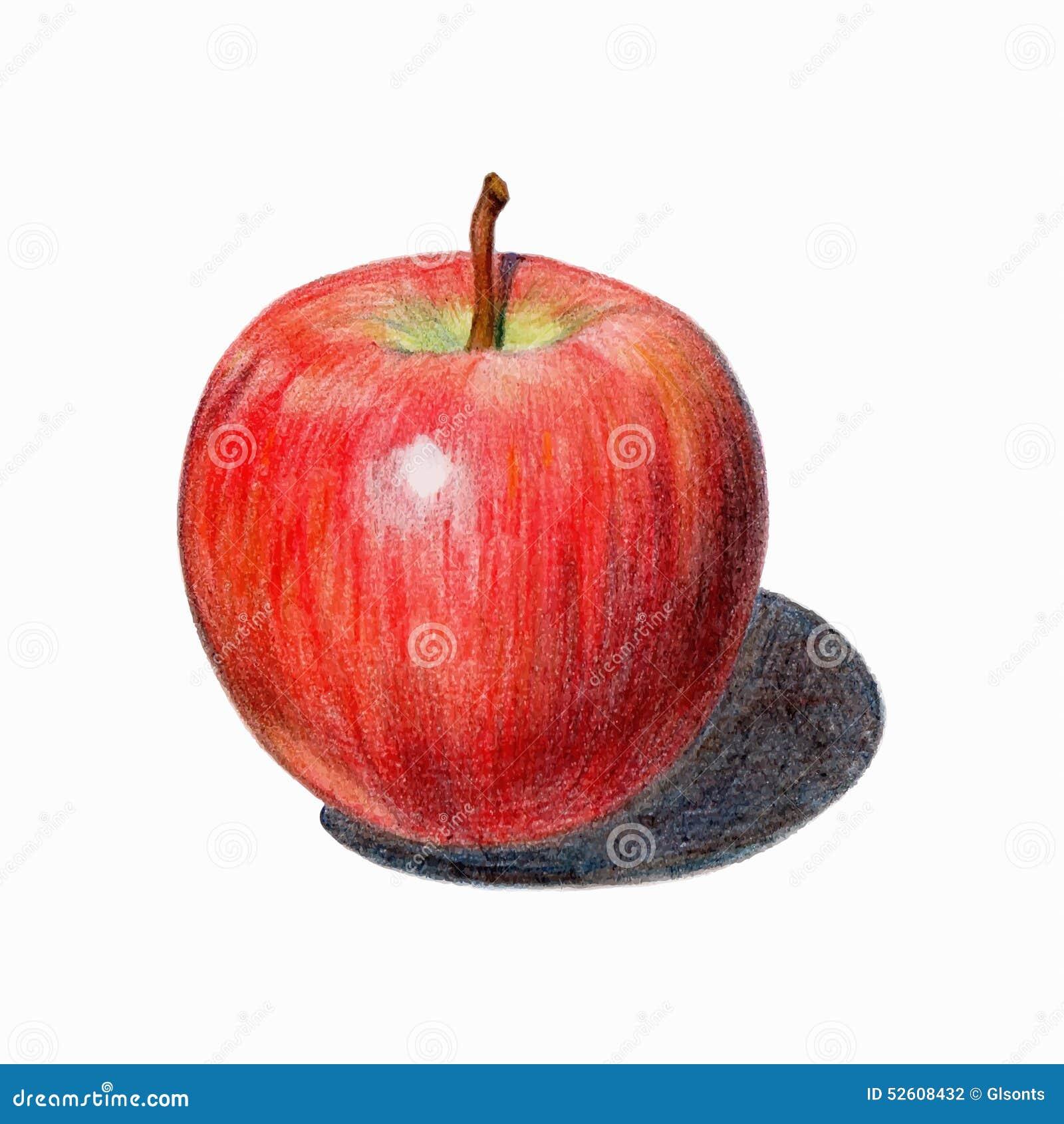 roter apfel mit schatten lokalisierte frucht gezeichnet mit farbigen bleistiften vektor. Black Bedroom Furniture Sets. Home Design Ideas