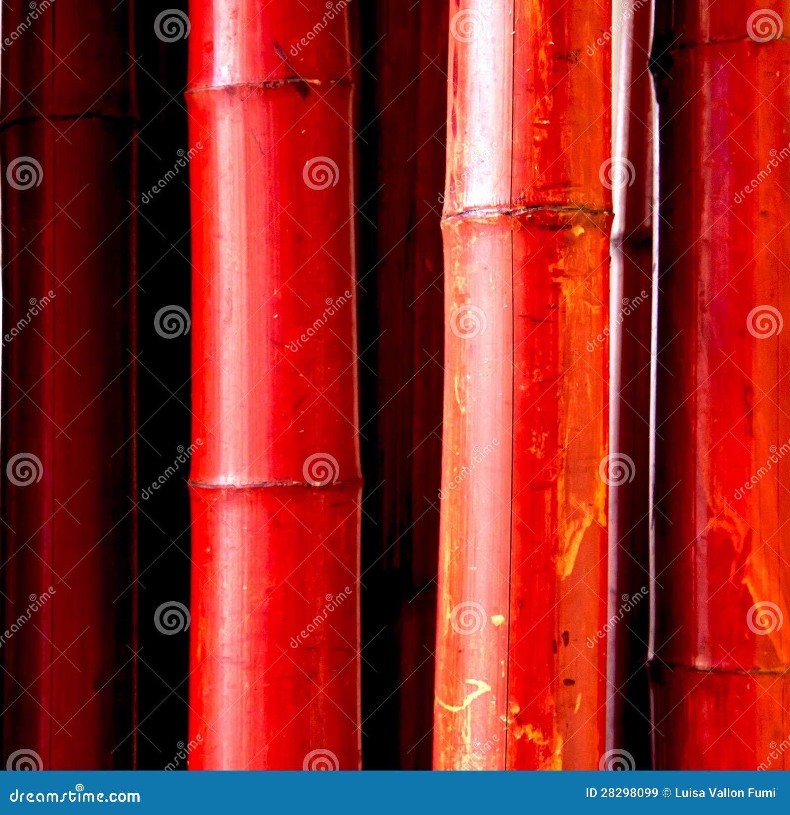 roter bambus lizenzfreie stockbilder bild 28298099. Black Bedroom Furniture Sets. Home Design Ideas