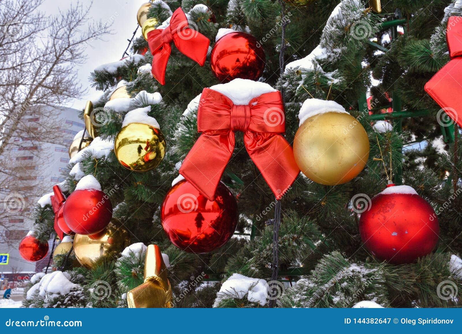 Roter Bogen auf dem Baum im Schnee