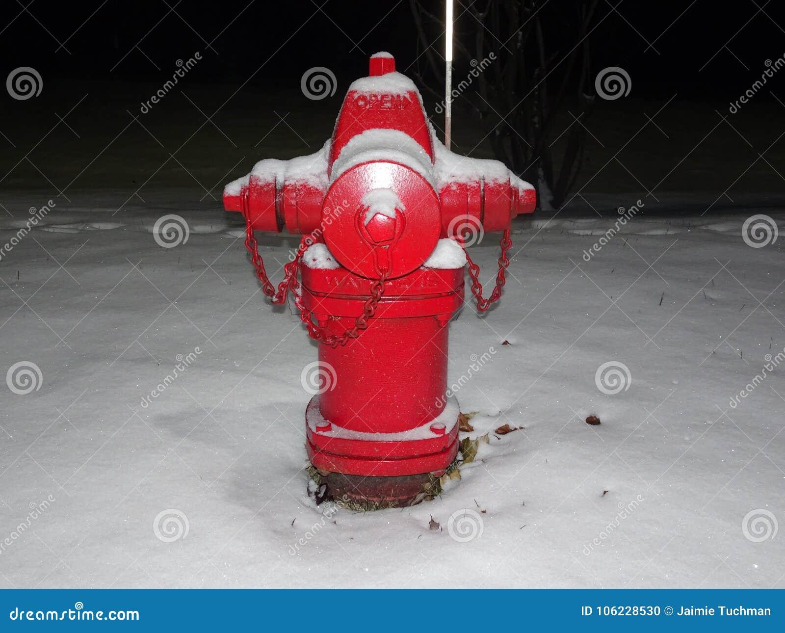 Roter Hydrant und Schnee