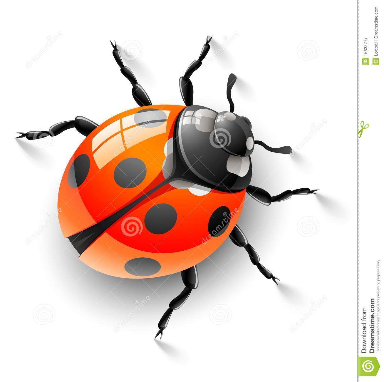 red ladybug background