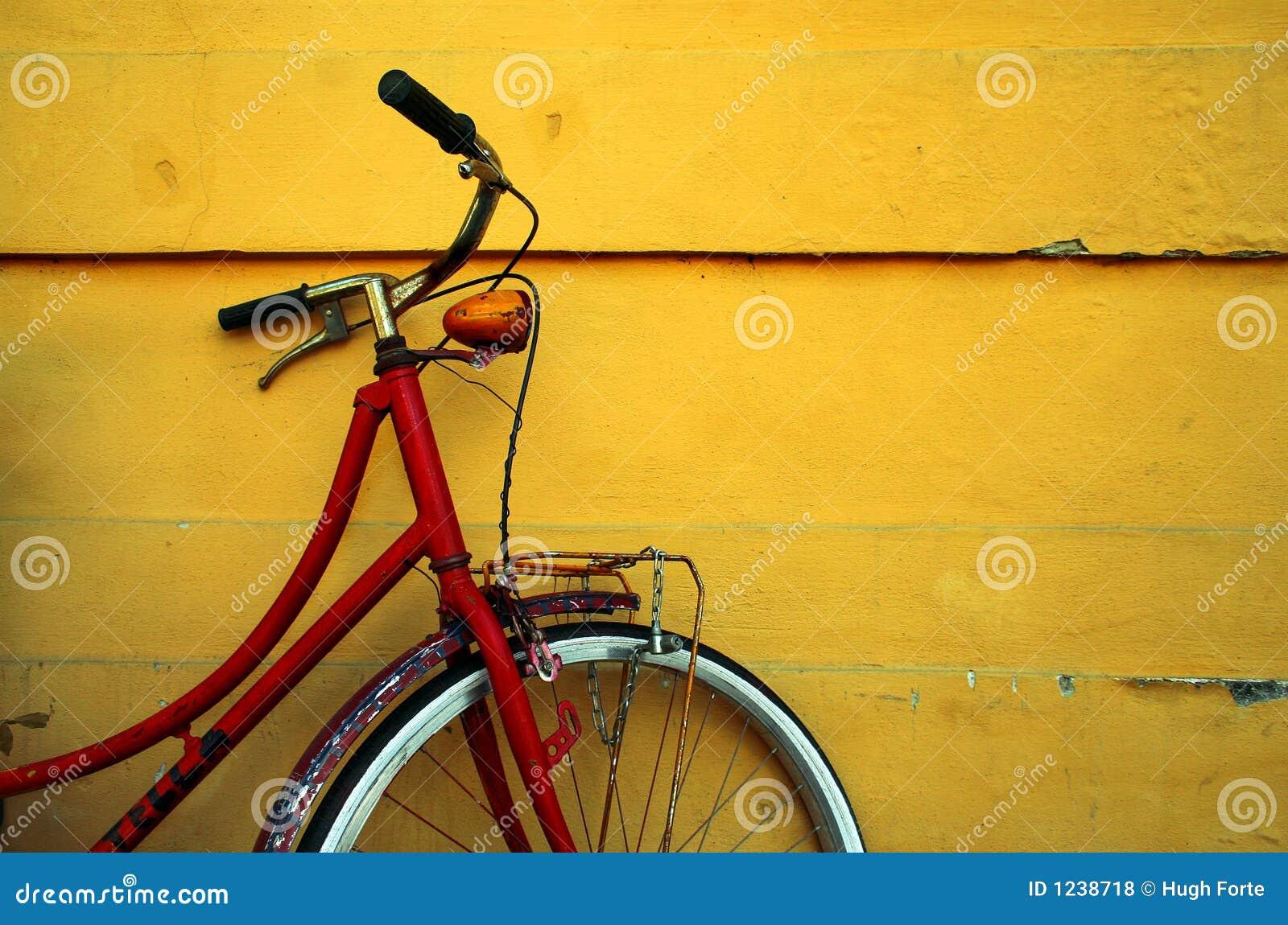 Frauen-Reiten Auf Weinlese-Fahrrad Mit Korb Stockbild