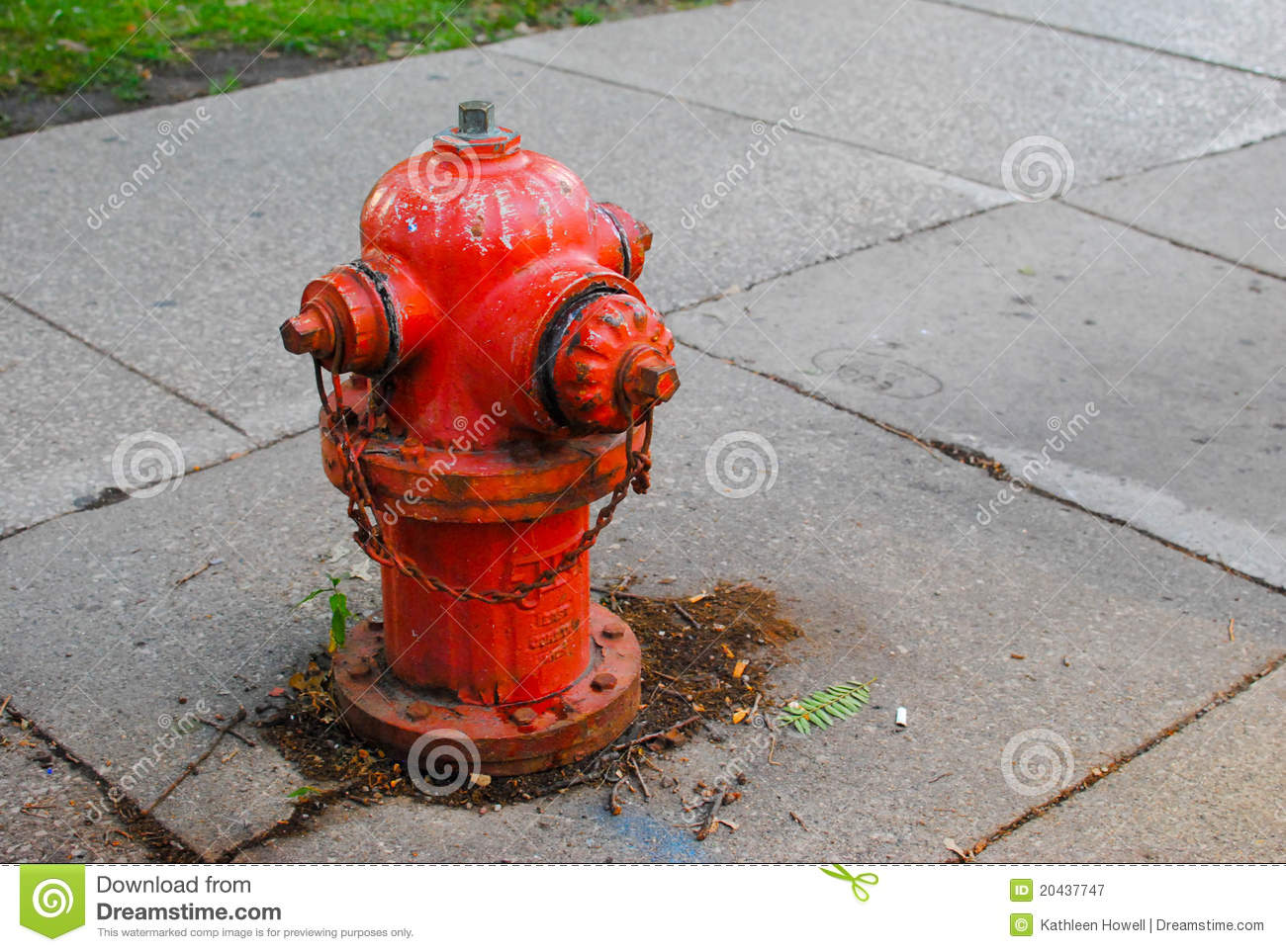 Rotes Feuer-Hydrant