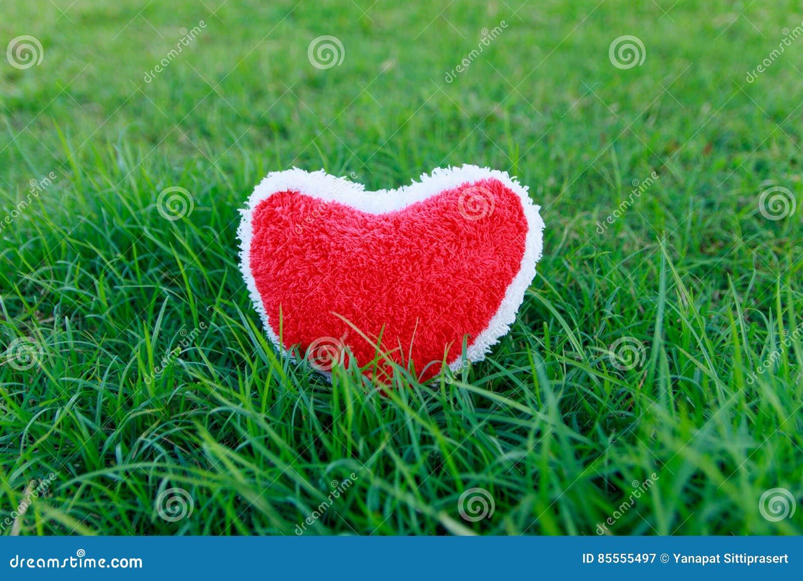 Rotes Herz auf Gras
