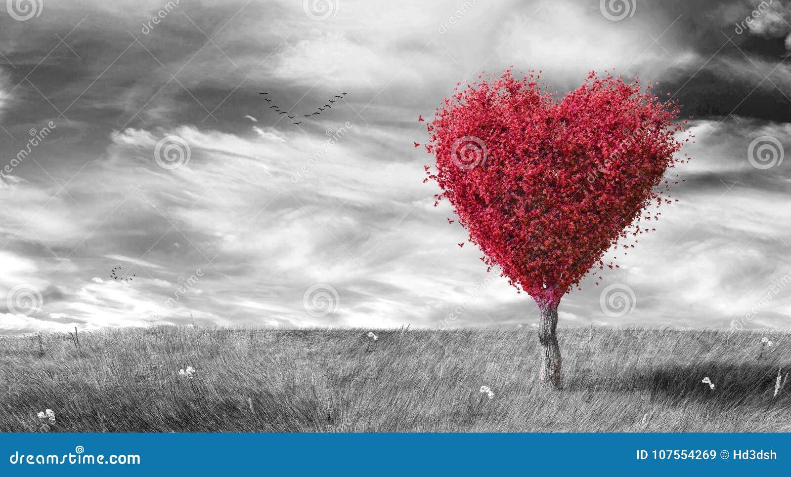 Rotes Herz formte Baum auf schwarzem u. weißem landschaftlich gestaltetem Hintergrund