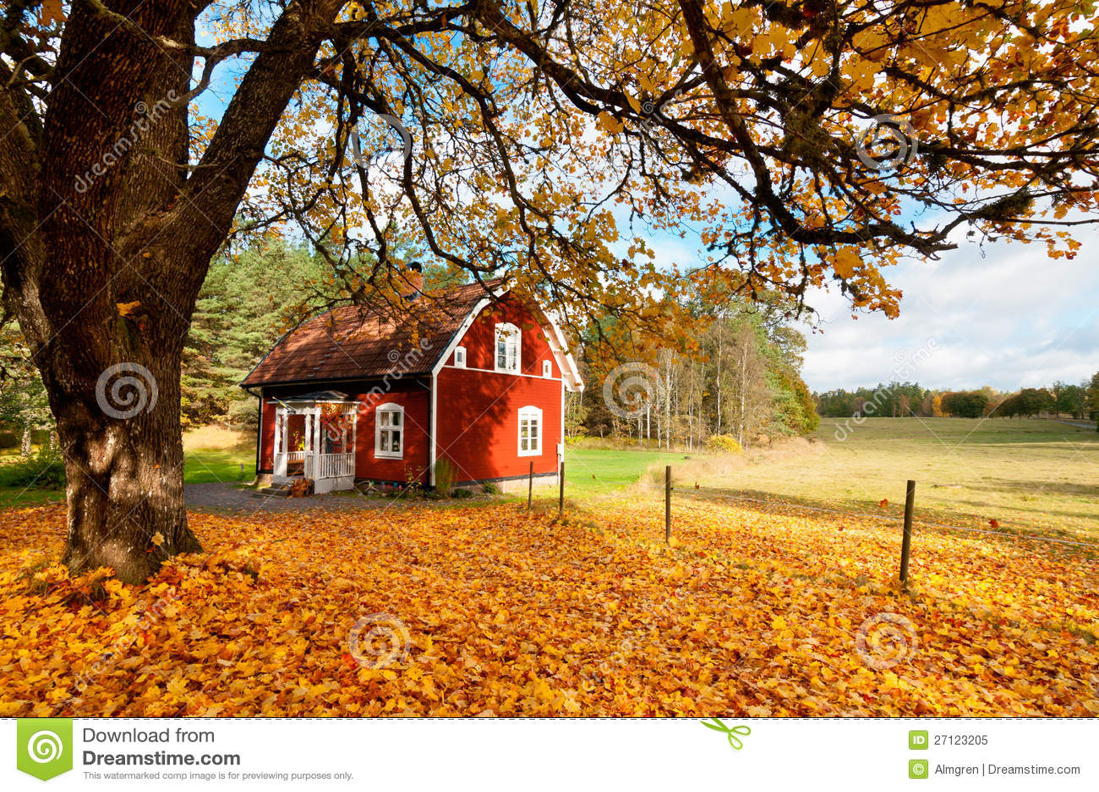 Rotes Schwedisches Haus Unter Herbstblättern Lizenzfreies ...