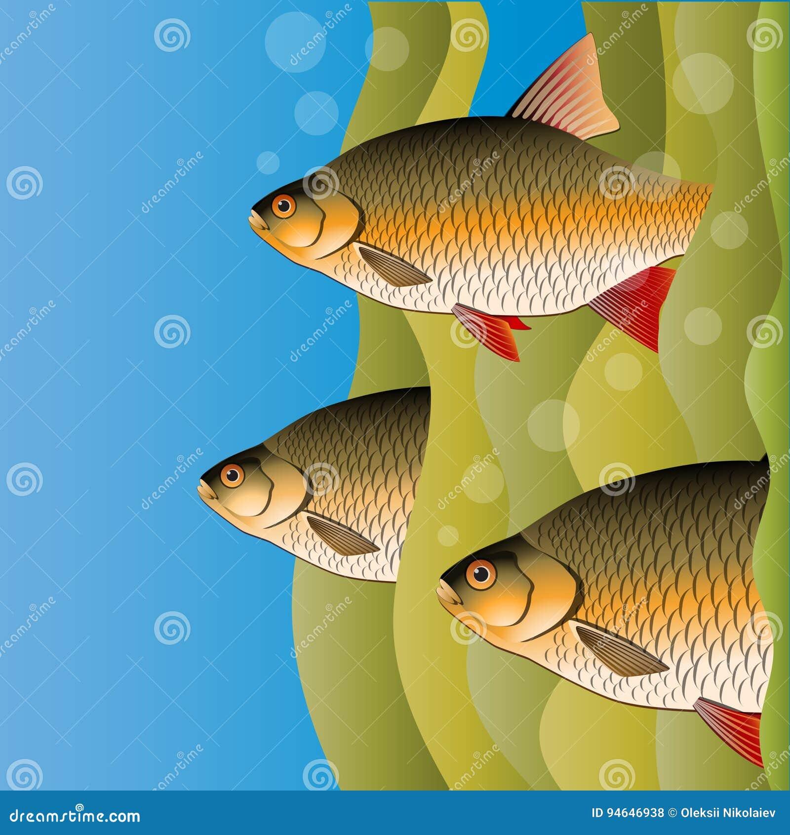 Wunderbar Fisch Färbung Spiele Galerie - Malvorlagen Von Tieren ...
