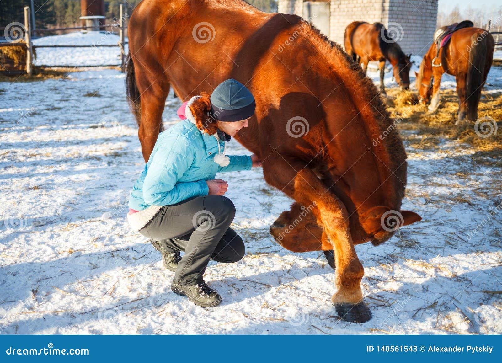 Rothaarige-Mädchen unterrichtete ein rotes Pferd zu schwören und zu tanzen