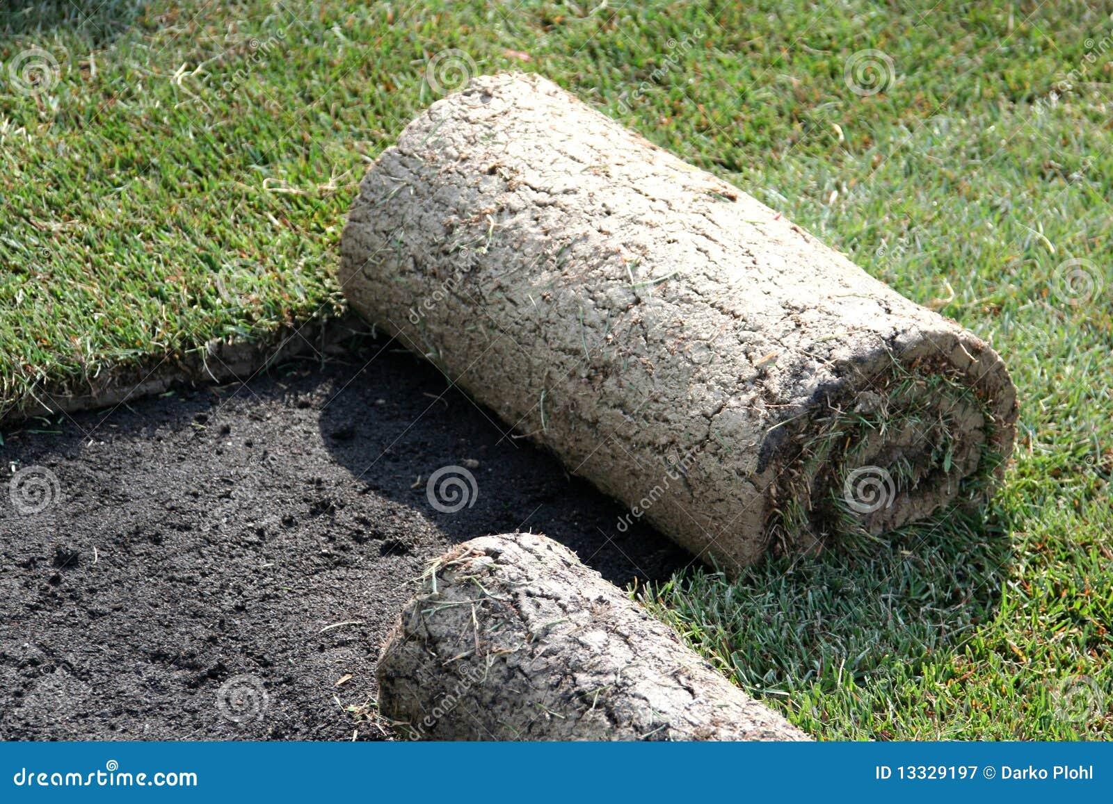 Rotoli di tappeto erboso prato inglese immagine stock for Tappeto erboso prezzi