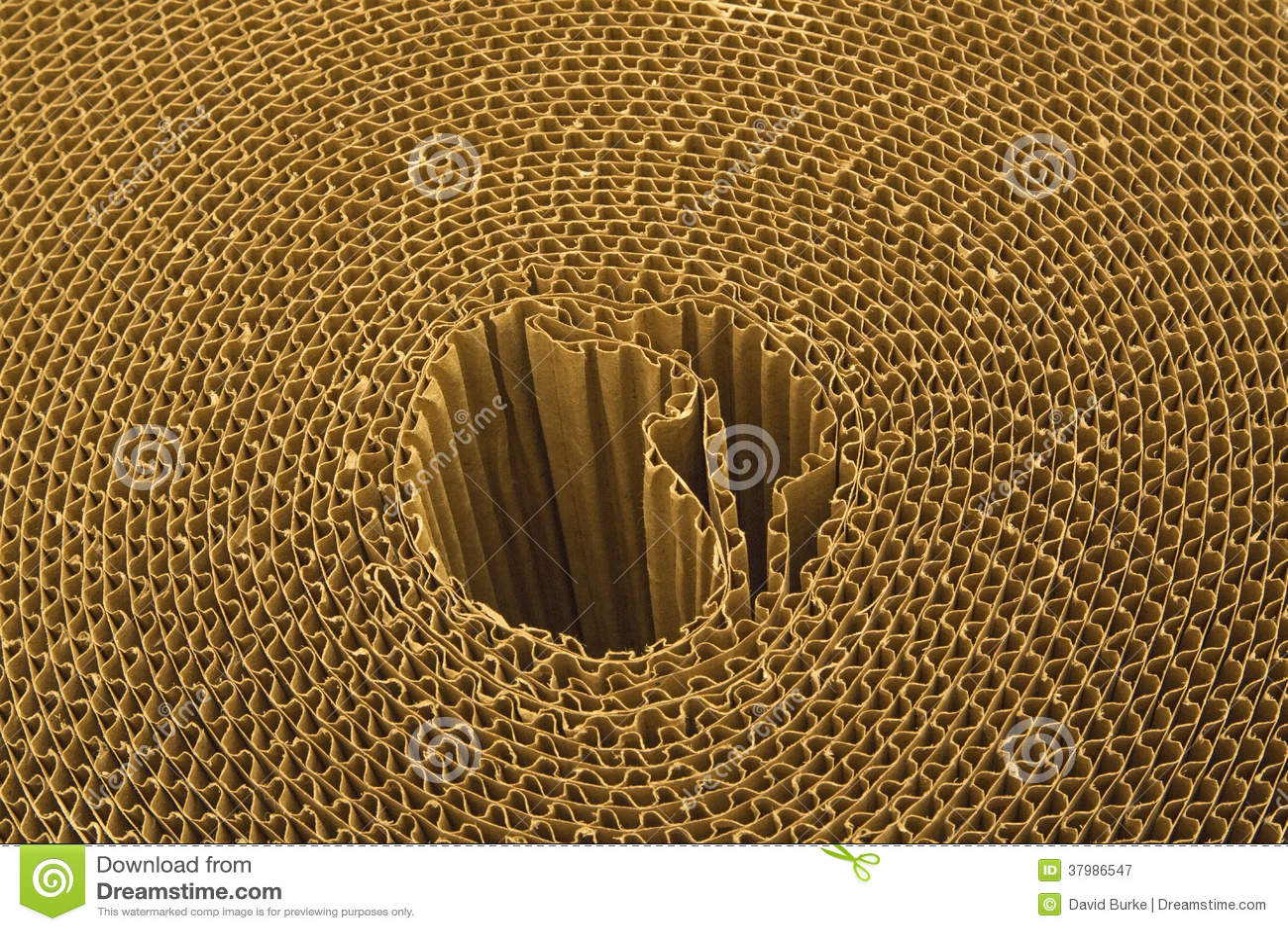 Rotolo dello strato del cartone ondulato