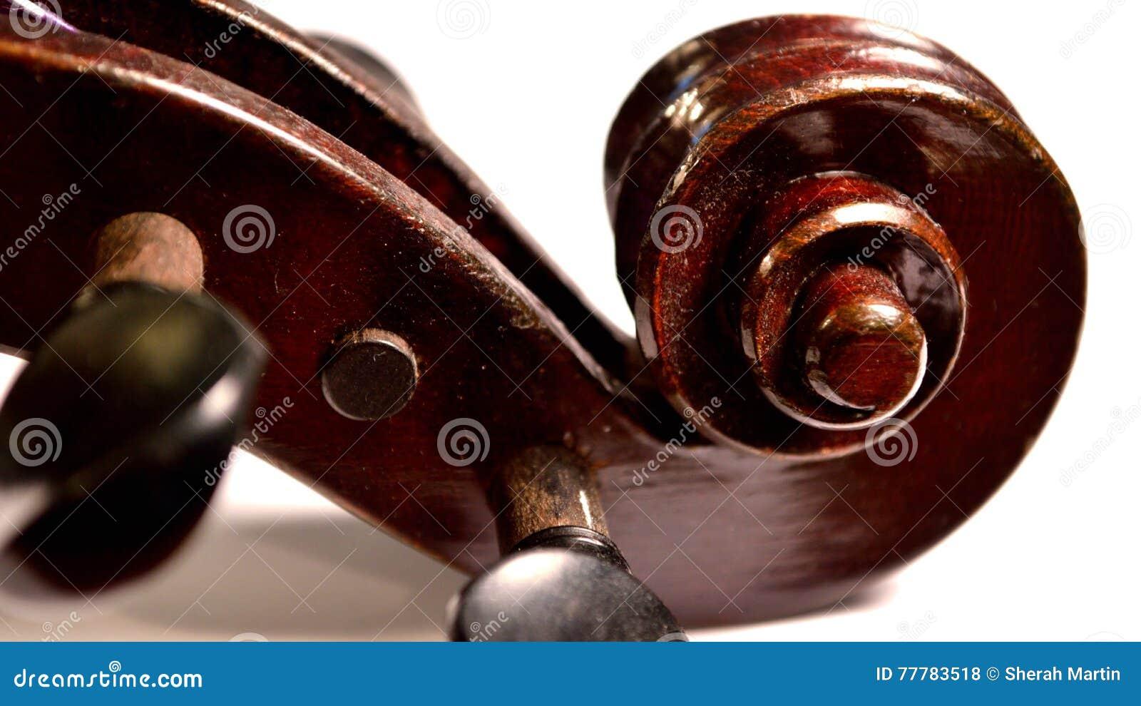 Rotolo scuro del violino contro fondo bianco, scatola di lettera