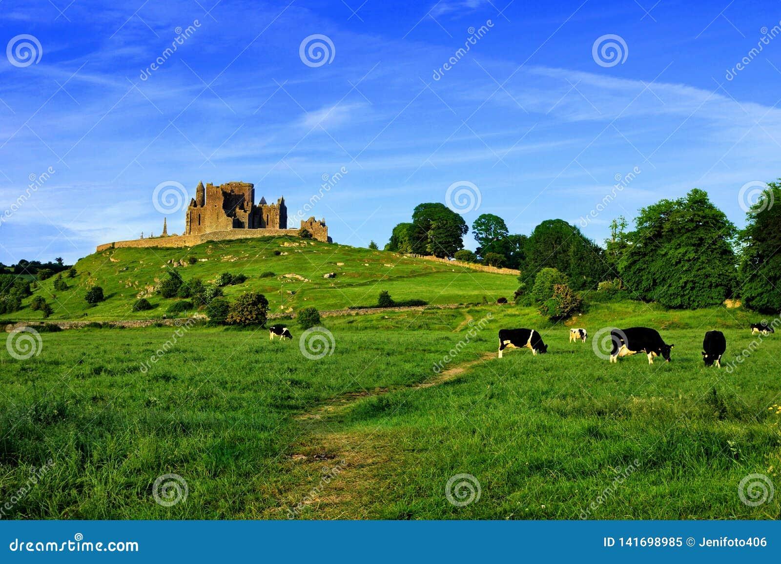 Rots van Cashel boven groene gebieden met koeien, Tipperary, Ierland