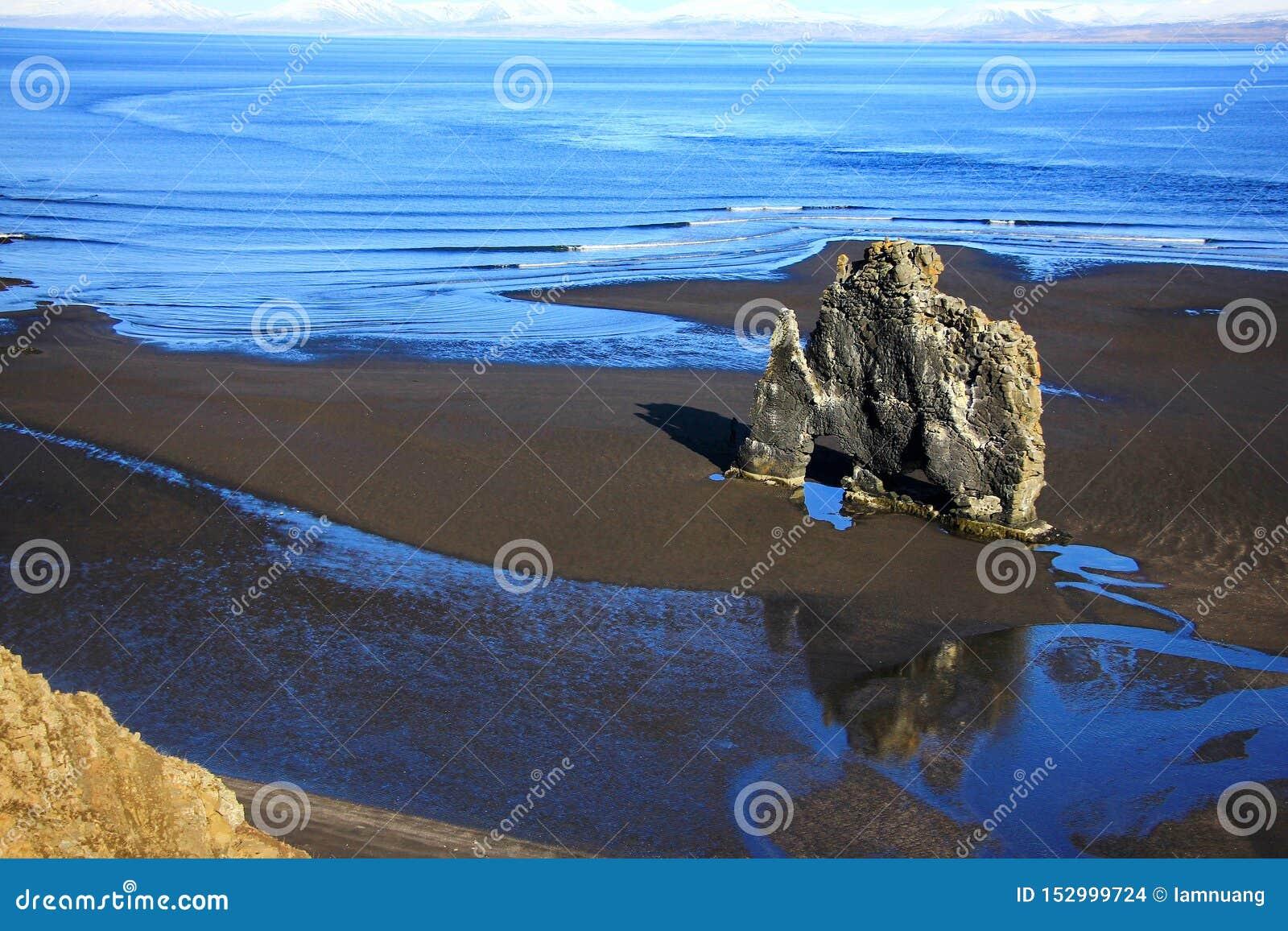 Rots van het Hvitserkur de unieke basalt in IJsland