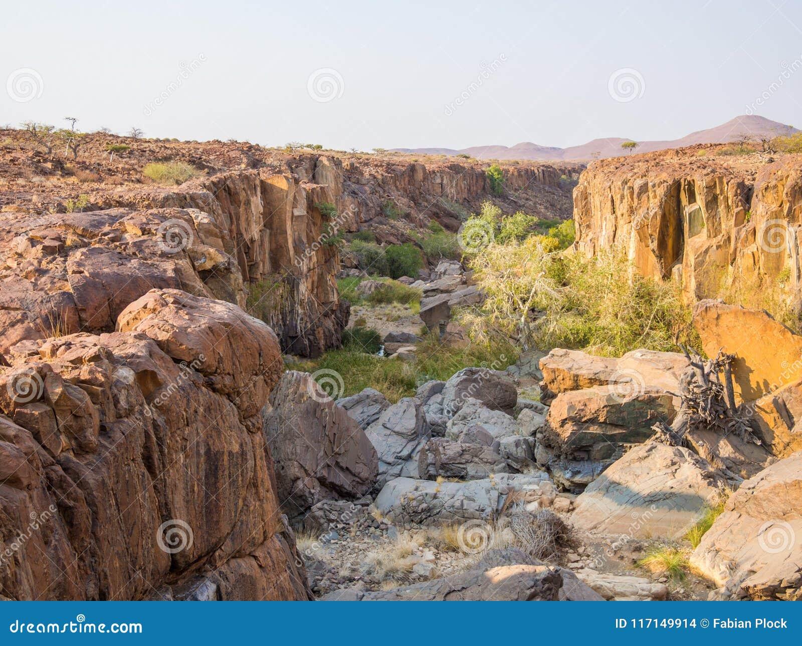 Rotsachtige canion met groene struiken en bomen in Palmwag-Concessie, Namibië, Zuid-Afrika