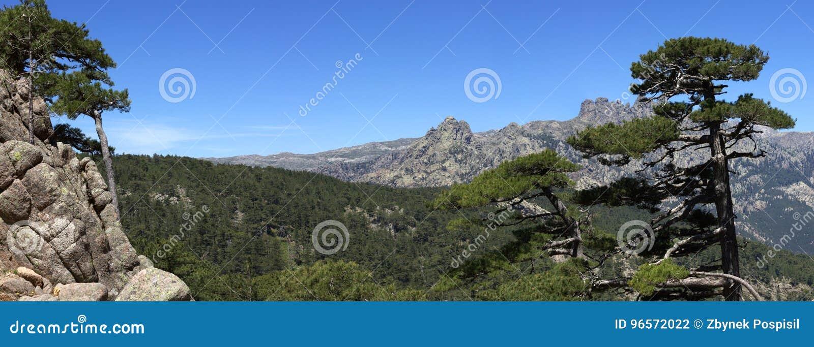 Rotsachtige heuvels in Col. de Bavella-bergen, Corsica, Frankrijk
