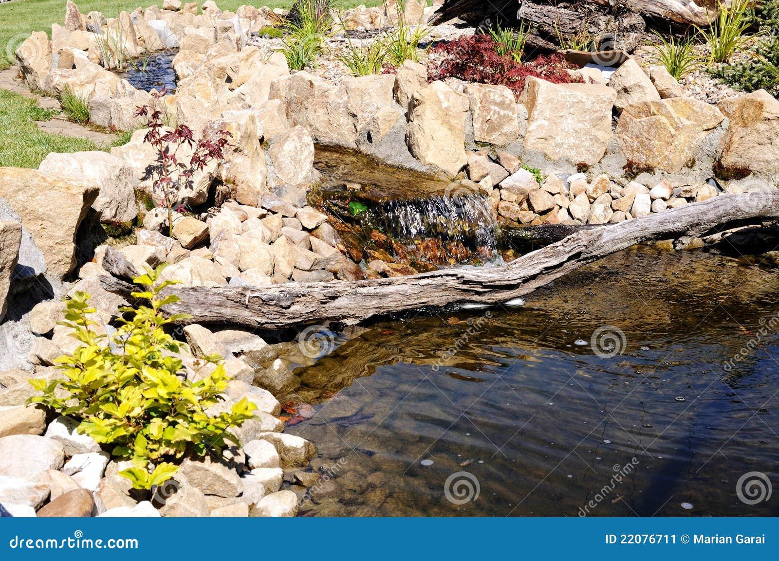 Rotstuin met een vijver in park het opvoeren stock for Een vijver