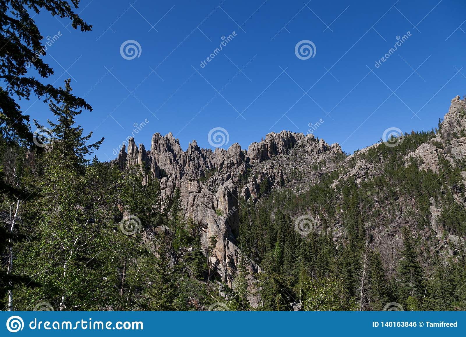 Rotsvormingen in Custer State Park