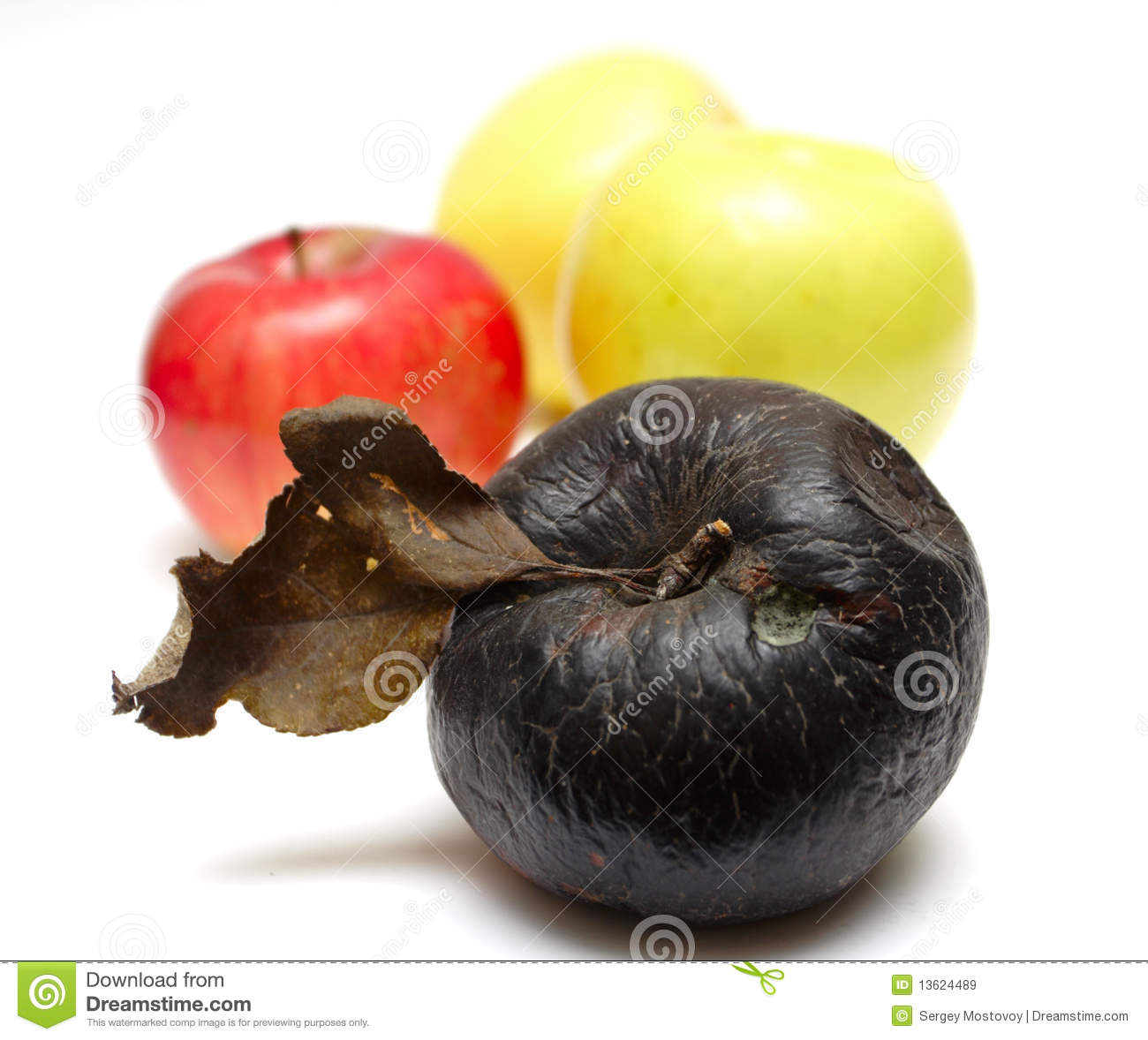 Rotten apple at the row of fresh apples