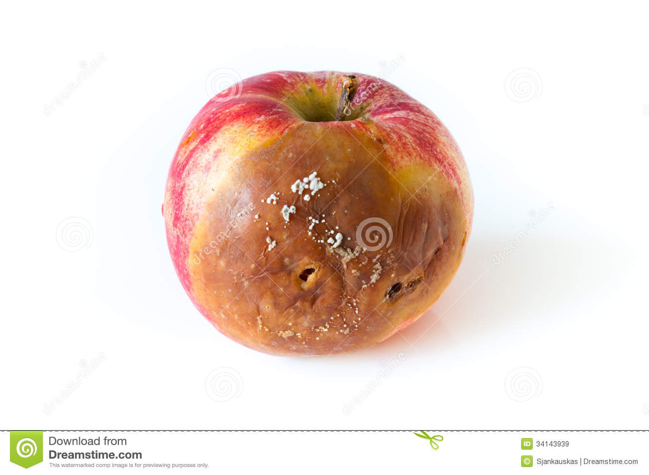 Download Rotten apple stock image. Image of closeup, rotten, half - 34143939