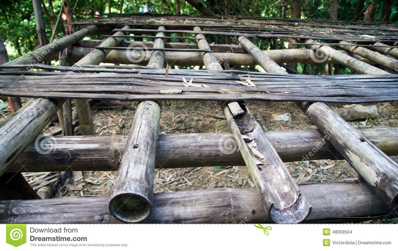 Rotten Bamboo Floor And Framing Stock Photo Image 48009504