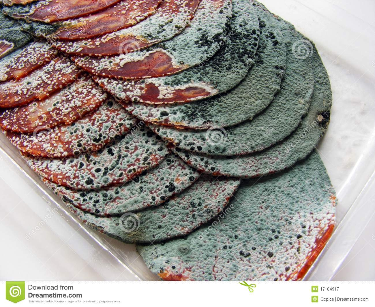 Rotten Meat In Slices Royalty Free Stock Photography ...