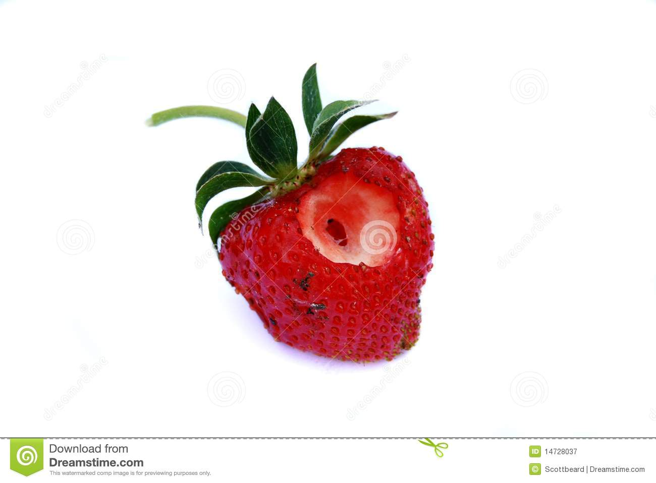 Rotten Strawberries Rotten strawberry with missing