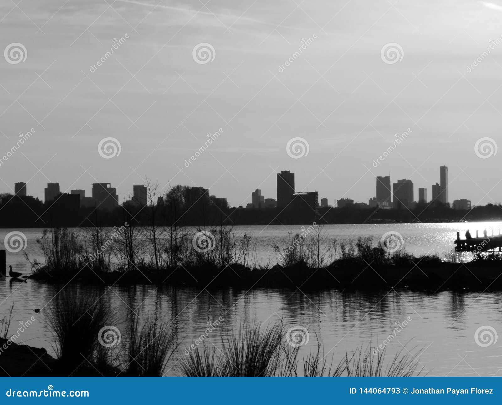 Rotterdam in black and white