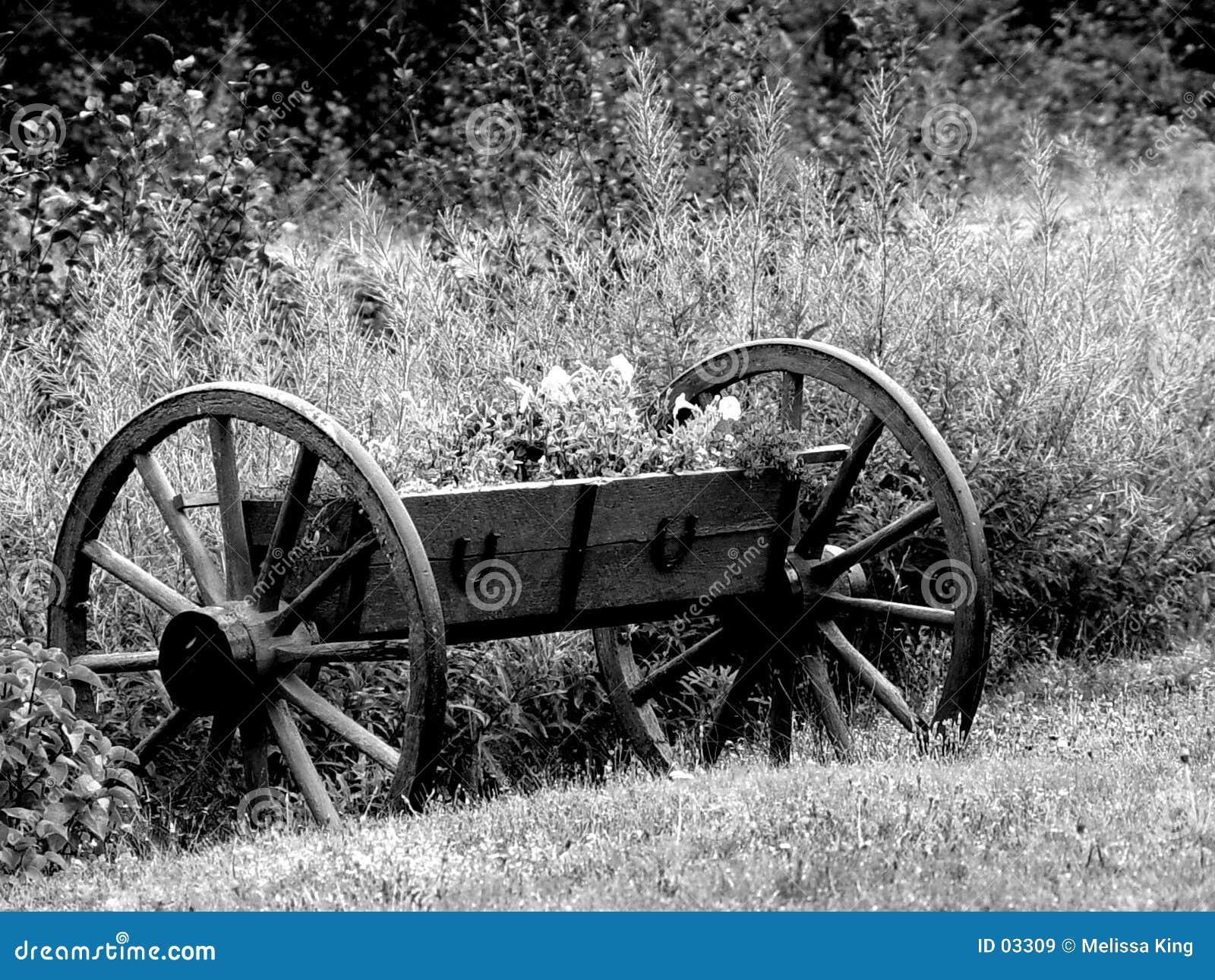 Roues de chariot