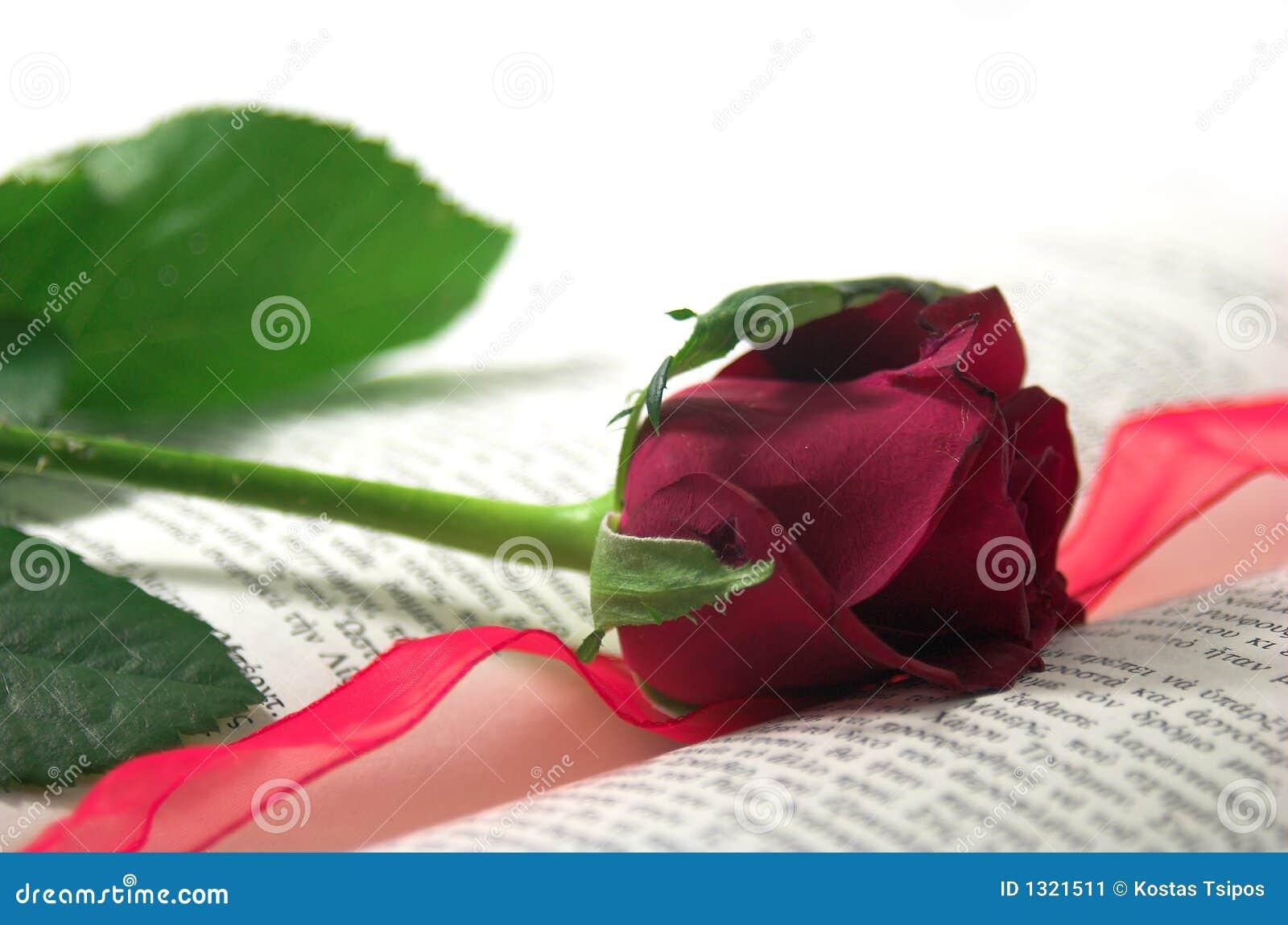 Rouge rose et livre